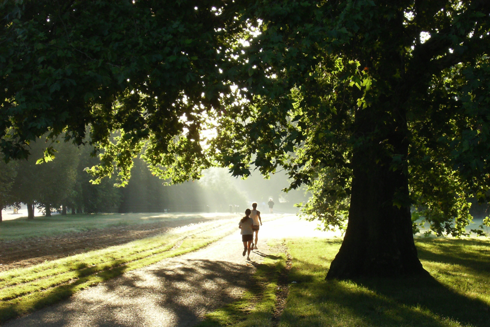 Hyde Park is a popular spot for relaxing and keeping healthy