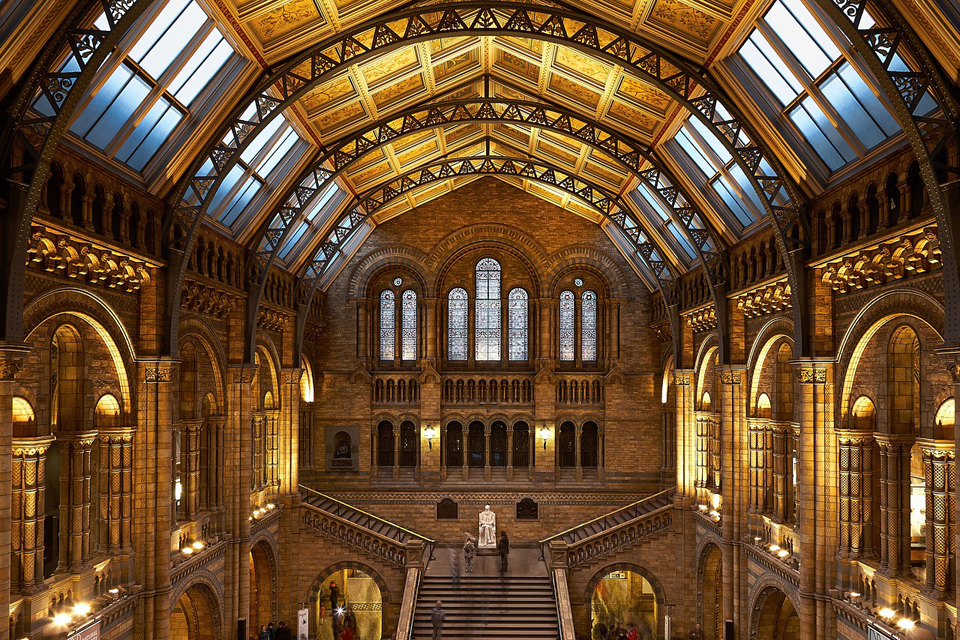 The spectacular entrance hall of the Natural History Museum